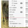 教大家Mac系统怎么创建智能邮箱?