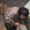 流浪大叔带馒头喂宠物店狗狗