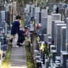 日本推出共享坟墓